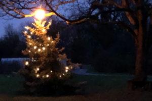 Weihnachtliches_Bollheim