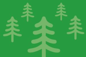 Vorbestellung Tannenbaum-Verkauf auf Haus Bollheim