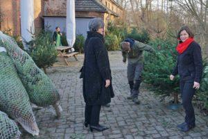 Tannenbaum-Vaerkauf aus Haus Bollheim