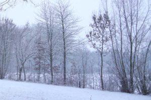 eichenallee haus bollheim im winter
