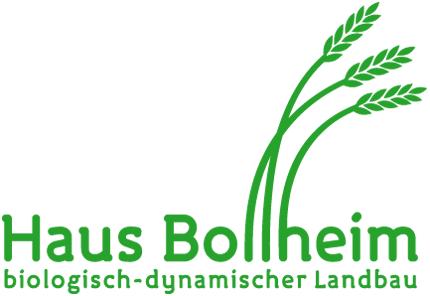 bollheim.de